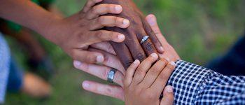 Praktijk Rootz Adoptie therapie